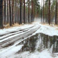 Весеннею распутицей зима... :: Лесо-Вед (Баранов)