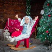 Заяц-лихой лосиный наездник!))))) :: Ольга Егорова
