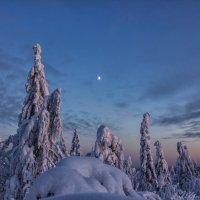 Вечерние краски :: Александр Чазов