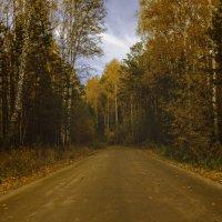 Осенняя дорога :: Ренат Фахрутдинов