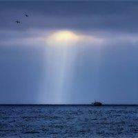 Январское море :: Марина