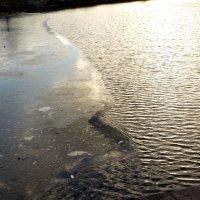 граница льда и воды :: Александр Прокудин