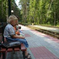 Новосибирская детская ж.д.. :: Олег Афанасьевич Сергеев