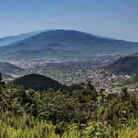Spain 2015 Canary Tenerife Las Mercedes :: Arturs Ancans