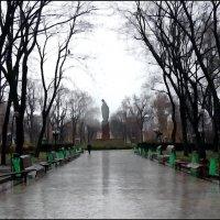 """Поздняя осень в """"Университетском парке"""" :: Владимир Бровко"""