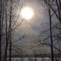 Зимнее солнце :: Геннадий Г.