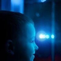 В голубом свете оконной гирлянды... :: Ольга Егорова