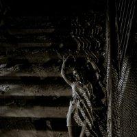 на лестнице.... :: Вероника Ходаренок
