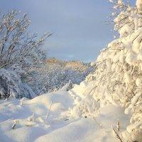 Время зимы :: Павлова Татьяна Павлова