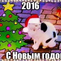 Кошка из Штаде шлёт вам поздравления, друзья! :: Nina Yudicheva