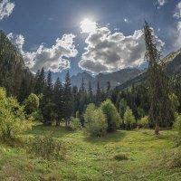 Домбайская поляна :: Аnatoly Gaponenko