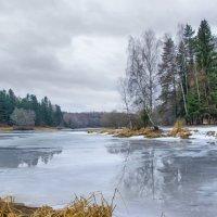 Природа в декабре . :: ALISA LISA