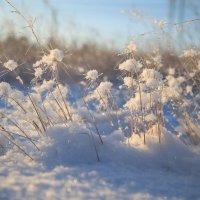 зима :: Вадим