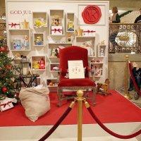 В ожидании Деда Мороза :: Swetlana V