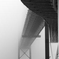 сквозь туман :: татьяна