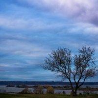 На берегу реки Волги. :: Светлана Салахетдинова