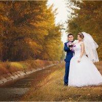 Осенняя свадьба :: Анатолий Николенко