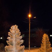 В тёплом свете фонаря. :: nadyasilyuk Вознюк