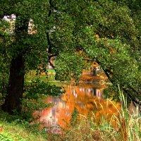Осенние отражения :: Сергей Карачин