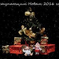 С  наступающим 2016! :: Svetlana Galvez