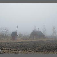Туман :: Игорь Николаич