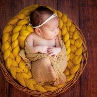 Новорожденные :: Эльмира Грабалина