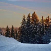 Зимняя дорога :: Татьяна Захарова