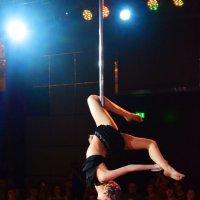 Сложный и красивый спорт :: Yelena LUCHitskaya