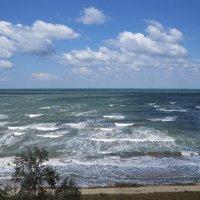 Азовское море :: Вера Щукина