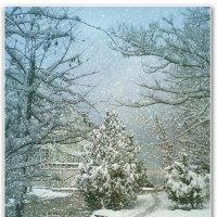Снег слетает, как пух с тополей... :: Эля Юрасова