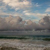 Белогривые облака :: Алексей Харитонов