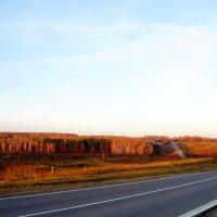 А дорога серою лентою вьется... :: Vladimir Smirnov