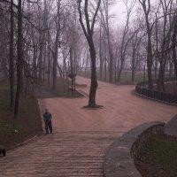 Раннее утро в городском парке :: Оксана Лада