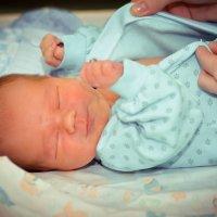 Новорожденные :: Olga Smith