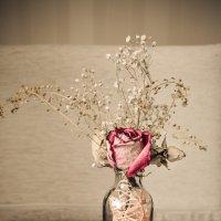 цветок :: Алина Иванова