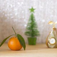 Скоро Новый Год ! :: Олег