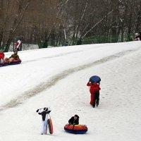 Зимние забавы :: Владимир Болдырев