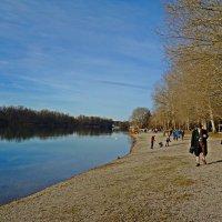 Хорошо в теплый(+15°), солнечный декабрьский денек прогуляться у озера. :: Galina Dzubina