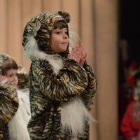 Танец тигров :: Валерий Лазарев