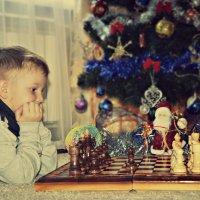 Юный шахматист :: Ирина Жеребятьева