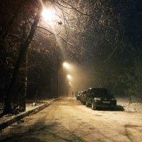 Снегопад :: Mirriliem Ulianova