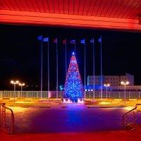 С Новым годом ! :: Андрей Куприянов