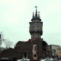 Ёлка у замка :: Владимир Болдырев