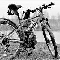 мой велосипед :: Светлана Прилуцких