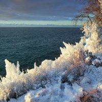 Ледяные цветы :: Анатолий Иргл