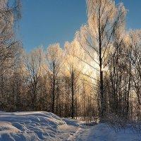 Волшебство зимнего утра :: Николай Белавин