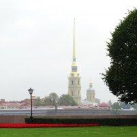 Стрелка. :: Владимир Гилясев