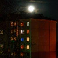 Ночь, 27 декабря 2015 и полная луна :: Анатолий Клепешнёв