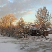 морозный день :: Сергей Кочнев