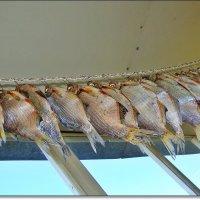 Рыбка сушеная :: Лидия (naum.lidiya)
